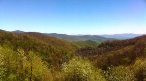 A peek at wilderness. Joyce Kilmer/Slickrock. Photo- NC Mountain Treasures