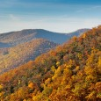 Color is starting to spill down the mountainsides once again. I recently received an email from
