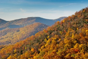 Fall color in WNC - creative commons photo