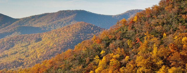 Color is starting to spill down the mountainsides once again. I recently received an email from a reader asking about the different fall colors and directions for some good viewing […]