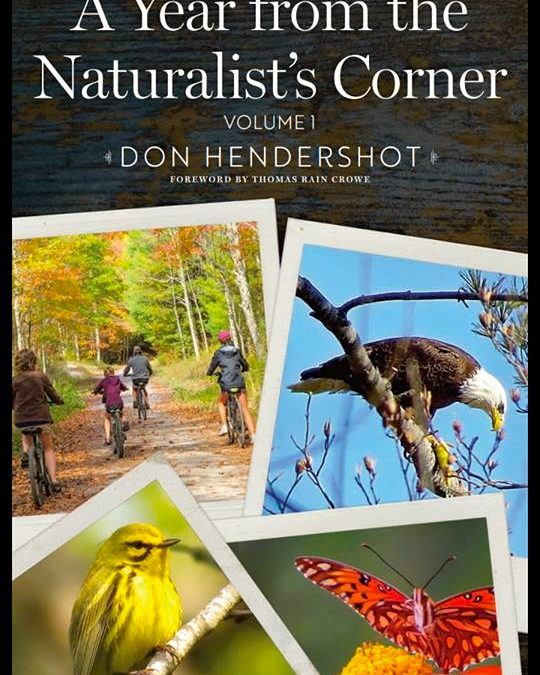 A Year From the Naturalist's Corner: Vol. I